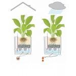 Stilingas augalų vazonas Lechuza Cube Cottage 40 5
