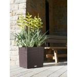 Stilingas augalų vazonas Lechuza Cube Cottage 40 1