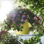 Stilingas augalų vazonas Cascadino Color 2