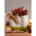 Plastikinis gėlių vazonėlis Lechuza Yula 2
