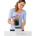 Vazonas augalams Lechuza Cube Color 6