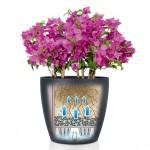 Spalvotas vazonas augalams Lechuza Classico Color 2