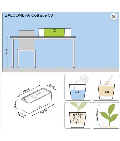 Balkoninis lauko vazonas Lechuza Balconera Cottage 50 2