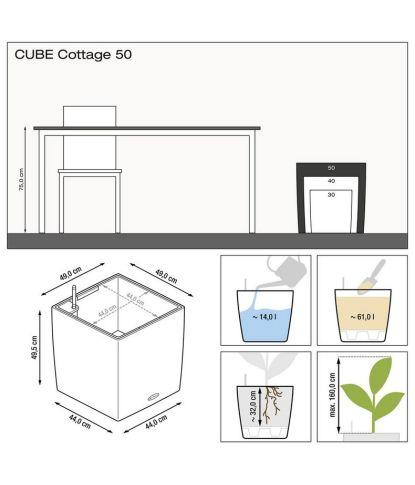 Augalų vazonas Lechuza Cube Cottage 50 3