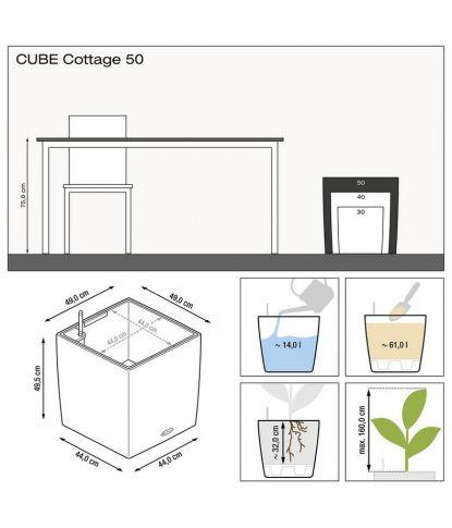 Augalų vazonas Lechuza Cube Cottage 50 2