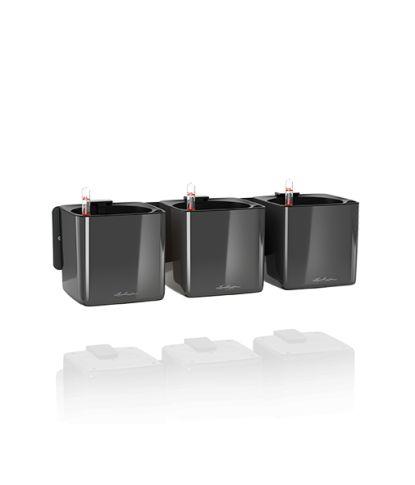 Augalų vazonas Cube Glossy