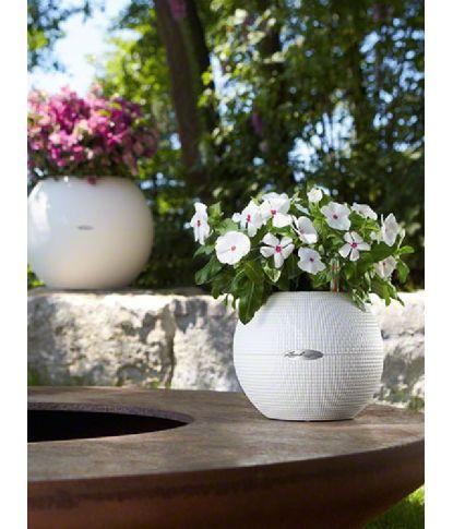 Plastikinis gėlių vazonas Lechuza Puro 50 4