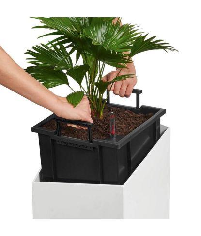 Vazonas augalams Lechuza Cursivo 4