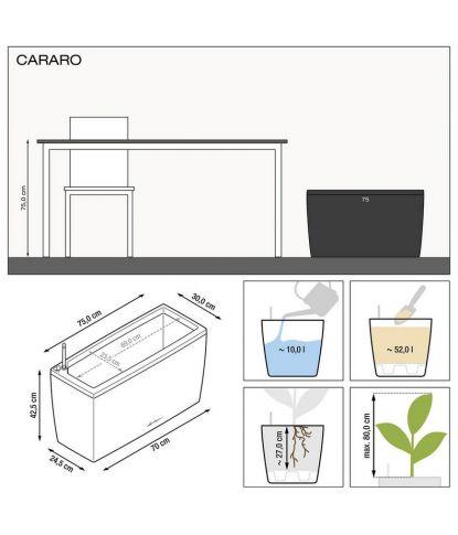 Stilingas augalų vazonas Lechuza Cararo 1