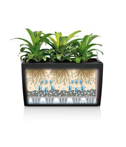 Stilingas augalų vazonas Lechuza Cararo 2