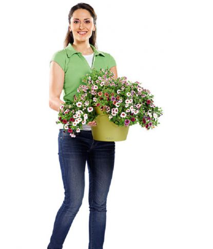 Prieskonių gėlių vazonas Lechuza Cascadino 3