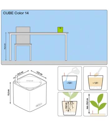 Cube Color 14