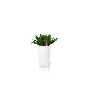 Stilingas augalų vazonas Lechuza Cubi