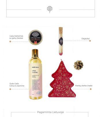 Kalėdinės dovanos – Raudona eglutė