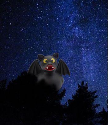 Pieštukinė Šikšnosparnis