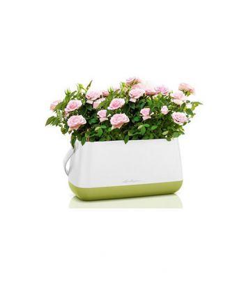 Tvirto plastiko gėlių vazonėlis - krepšys Lechuza Yula
