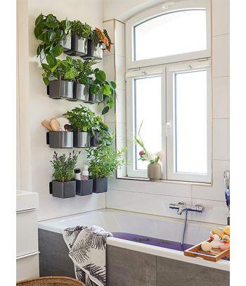 Žaliosios augalų sienos rinkinys Cube Glossy