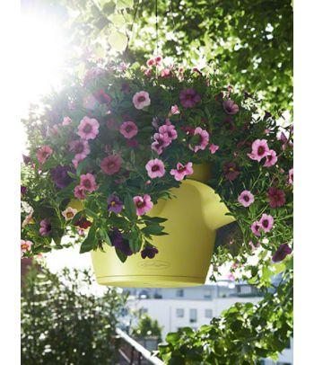 Prieskonių gėlių vazonas Lechuza Cascadino