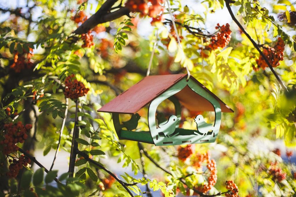 Spalvota medinė lesykla paukščiams su stogeliu 1