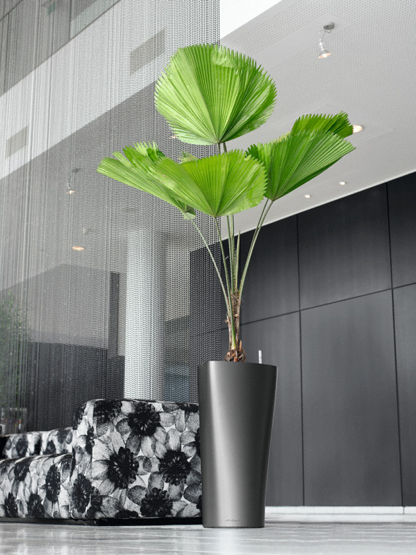 Plastikinis vazonas gėlėms Lechuza Delta 4
